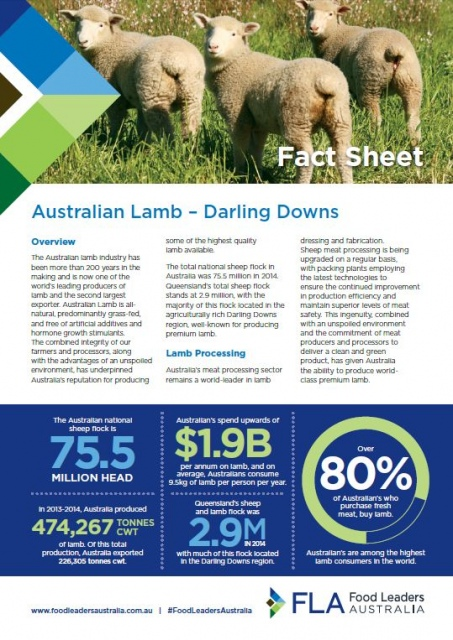 Lamb Fact Sheet - English